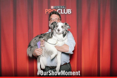 day 1 - purina national dog show
