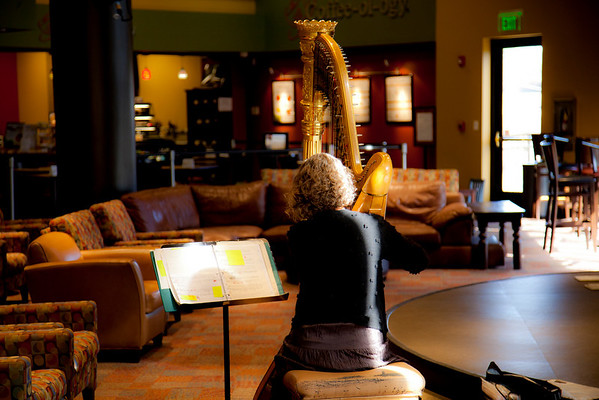 Instrumentalists @ the Plaza-Marsha Gunter February 13, 2011