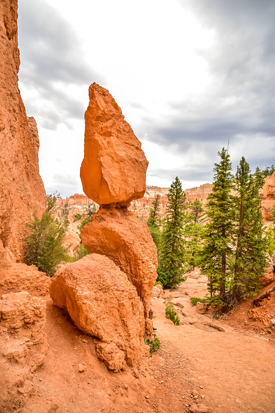 2019 Grand Canyon-140.jpg