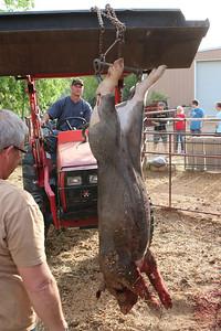 Pig to Pork 4-22-14