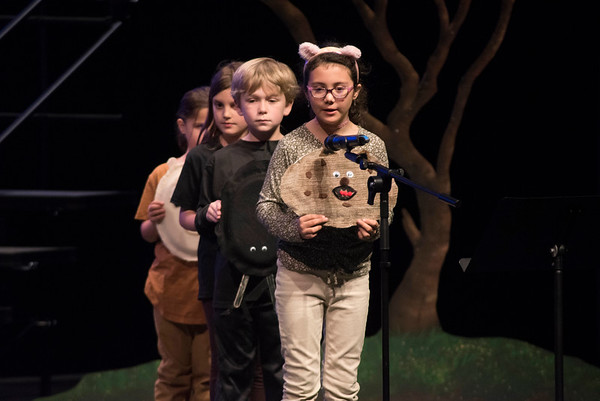 2nd Grade Ecosystems Play 2019