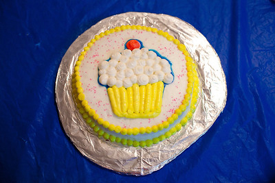 Missy's Cake 2010