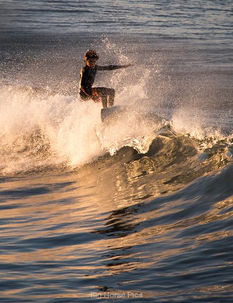 venice surf 11.jpg