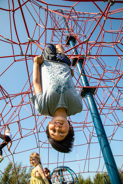 Spider Park