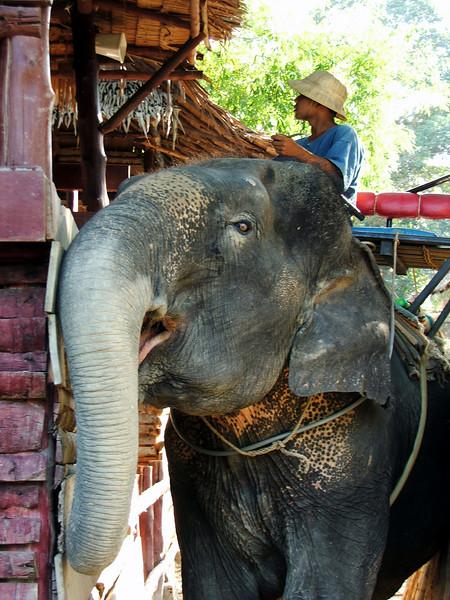 Thailand 078.jpg