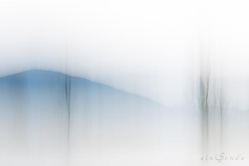 Haiku primordial II. Verso blanco, verso negro, verso azul