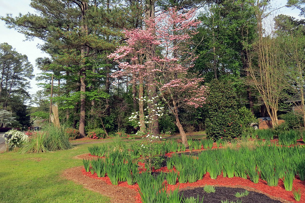March 27 - April 18:  Spring continues .  .  .