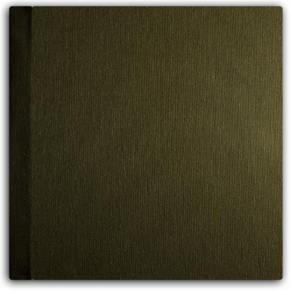 009 Olive Green.png