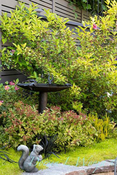 The Chartreuse Garden_1027.jpg