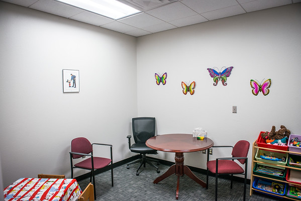 Pinellas County Sheriff's Office Child Interview Room Refurbish