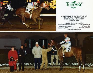TENDER MEMORY - 1/14/2000