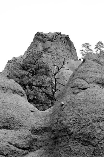 Arizona2014-107.jpg