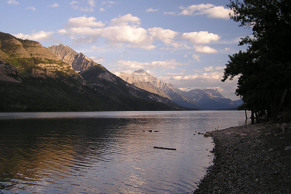 Waterton 2006