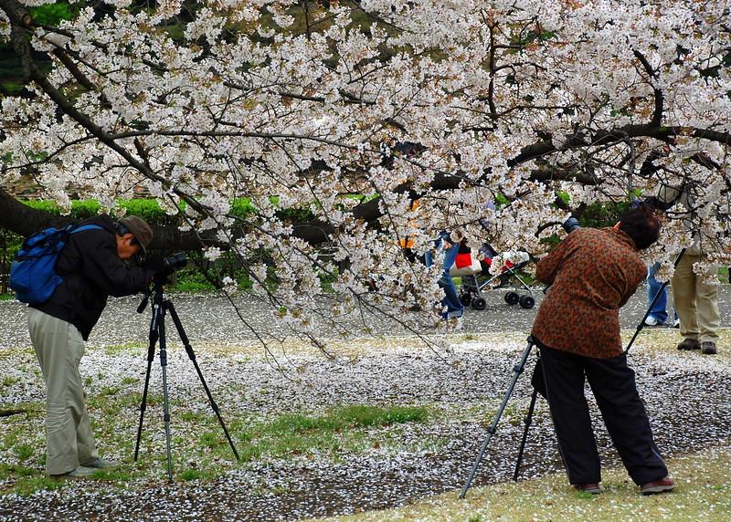 34-Japan07_1462.JPG