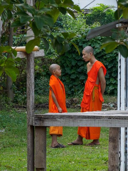 Indochina 2017-00085.jpg