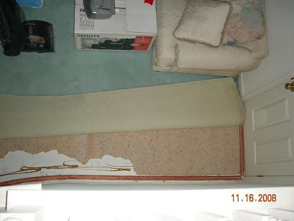 Devastation 2008/11/15