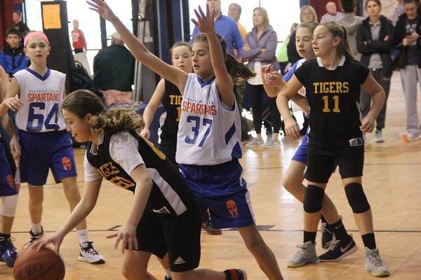 Girls Basketball U.12 Spartans Vs Tigers