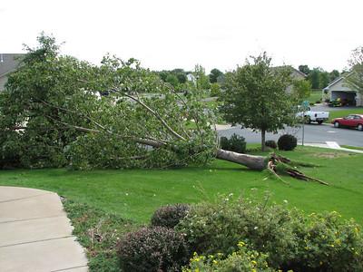 Rogers Tornado 2006