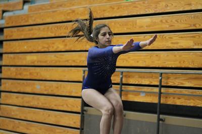 2014 LCC Gymnastics