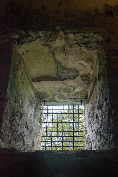 blarney-castle-41.jpg