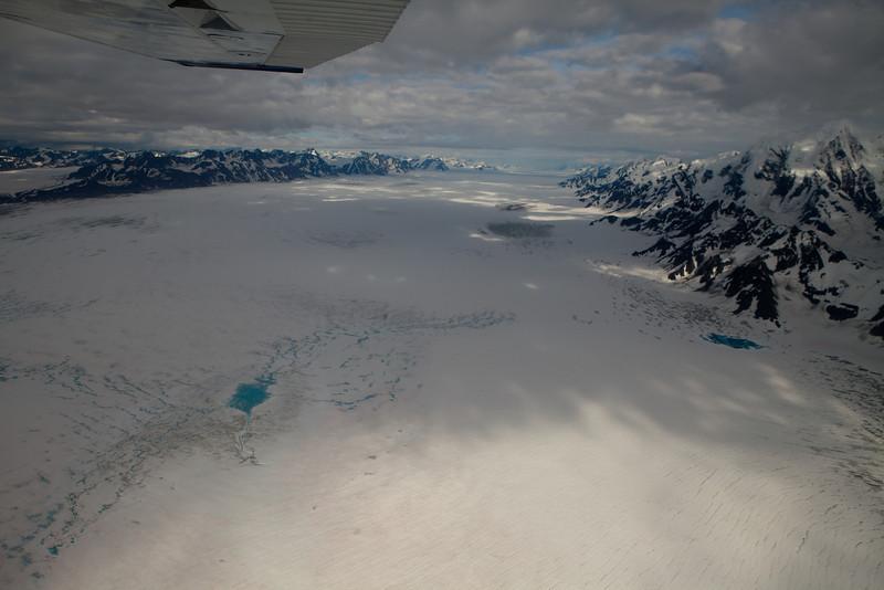 Alaska Icy Bay-4691.jpg