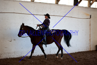 Open Western Pleasure  110508