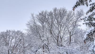 Last Snow Storm