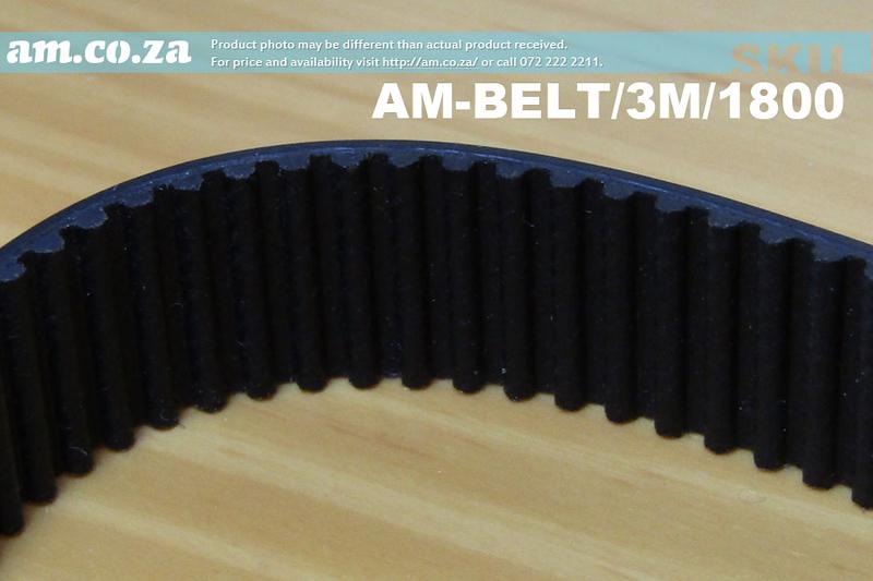 tips-belt.jpg