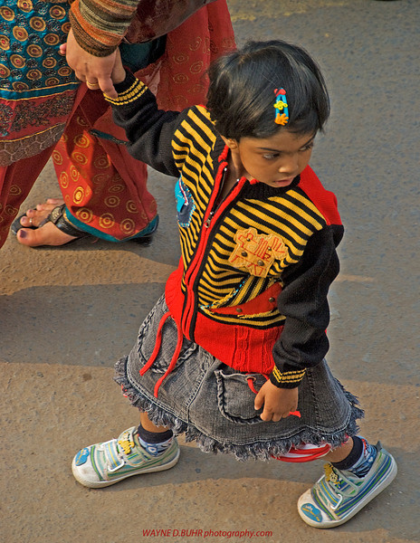INDIA-2010-0201A-371A.jpg