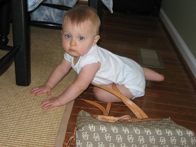 Mom let's me play in her purses.  Now, how do I get out of this thing?