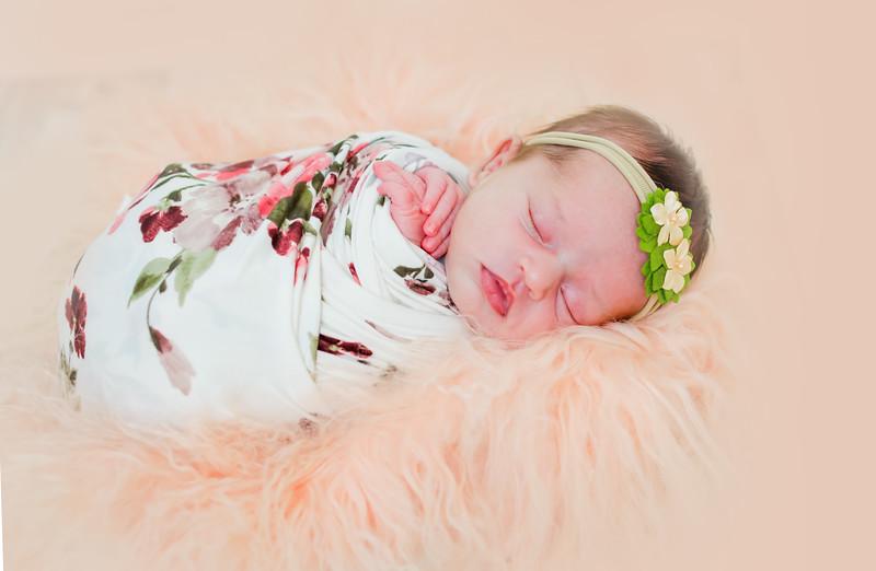 partial-newport-babies-photography-8620-1.jpg