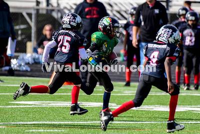 Youth Football: AYFL C-Irish vs. C-Bulldogs 11.04.2017 (by Al Shipman)