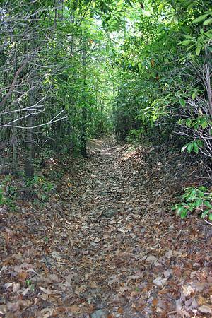 Section 3 - Skeenah Gap to Highway 60
