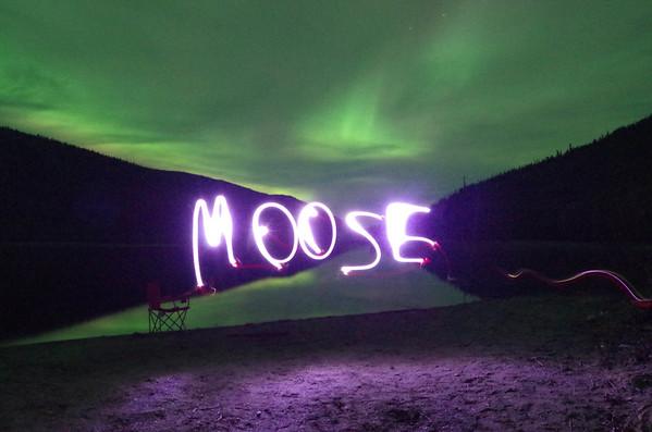 2014 yukon moose hunt with dinn boys