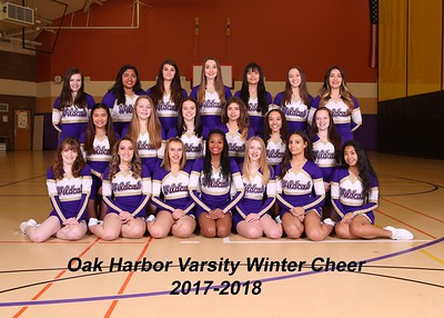 OH Winter Cheer 2017-2018