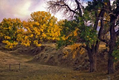 Northeast Wyoming