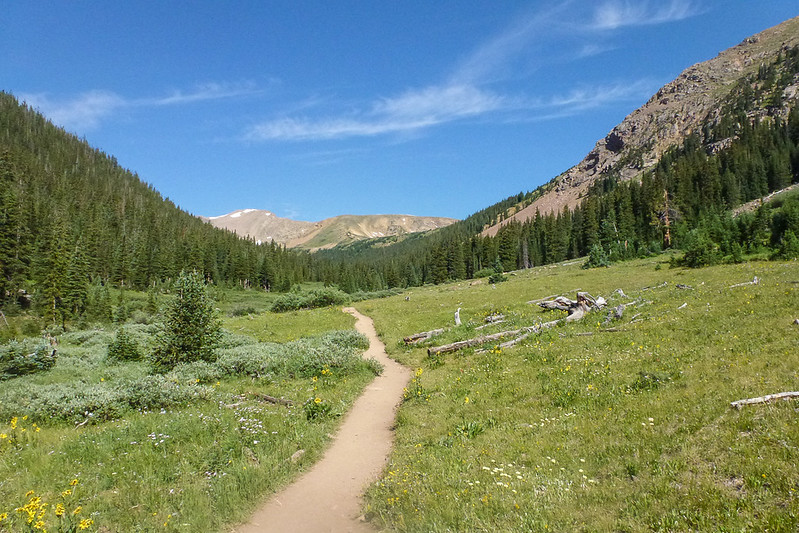 Trail up Herman Gulch