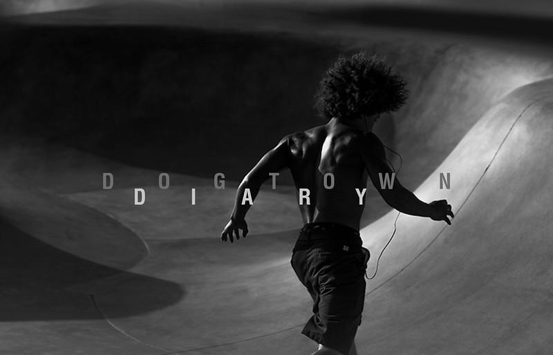 Dogtown Diary