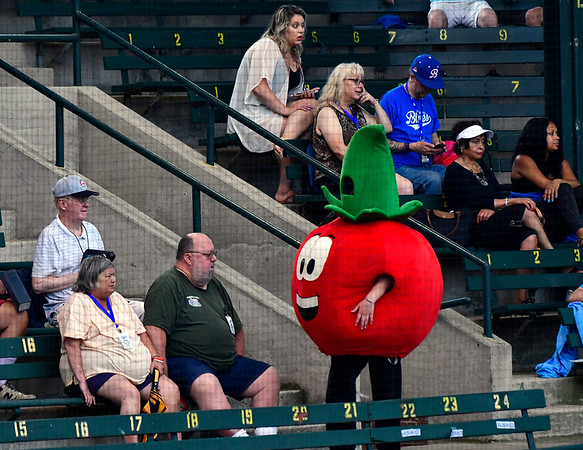 7/6/2019 Mike Orazzi | Staff The Chunky Tomato mascot at Muzzy Field on Saturday night.