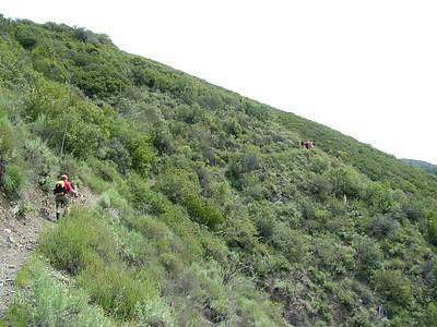 4/2/2005 - Trabuco Canyon Training Hike II