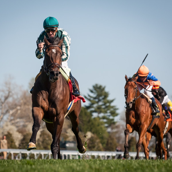 Centre Court (Smart Strike) wins The Jenny Wiley Stakes (G1) at Keeneland on 4.13.2013.  Julien Leparoux up, Rusty Arnold trainer, G. Watts Humphrey owner.