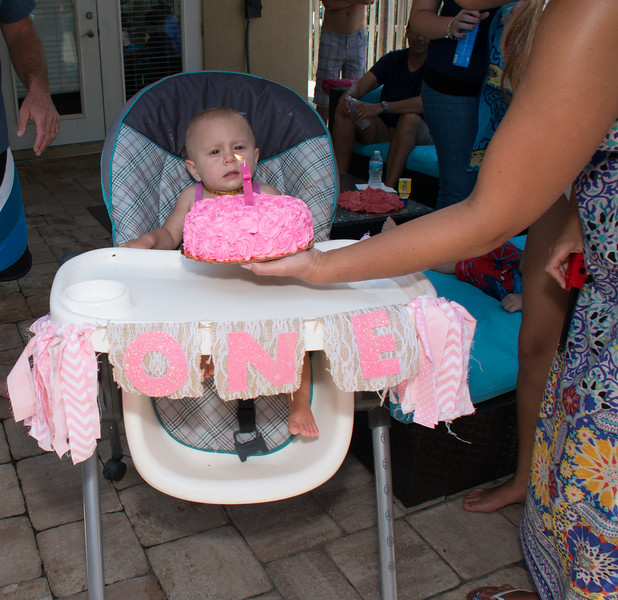 Lila's 1st Bday Party-195.jpg
