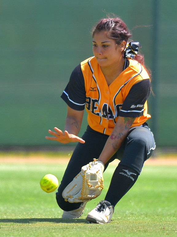 . LBSU center fielder Leilani Tupua-Tautalatasi fields a ball hit for an RBI as LBSU lost to Cal Poly softball 3-0 in Long Beach, CA on Sunday, May 4, 2014.  (Photo by Scott Varley, Daily Breeze)