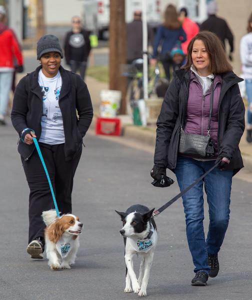 Richmond Spca Dog Jog 2018-596.jpg