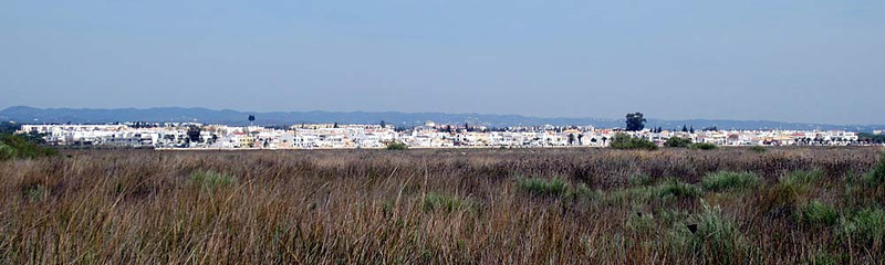 Tuesday 18 March 2014 : Tavira and Graveyard of the Anchors, Algarve
