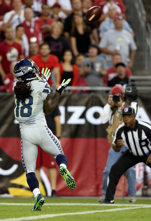 . Wide receiver Sidney Rice #18 of the Seattle Seahawks scores a touchdown in the first quarter against the Arizona Cardinals during a game at the University of Phoenix Stadium on October 17, 2013 in Glendale, Arizona.  (Photo by Christian Petersen/Getty Images)