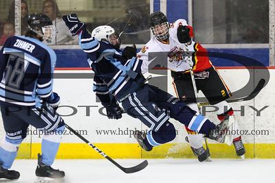 Sabres vs Freeze, Midget 18U 1-14-17