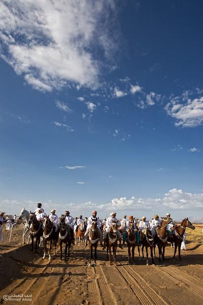 Horses Race  (5).jpg