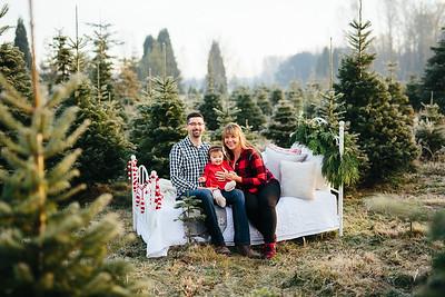 Christmas Mini   2019