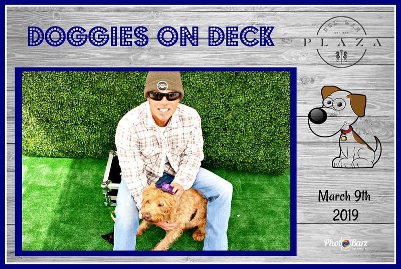 Doggys on Deck15.jpg